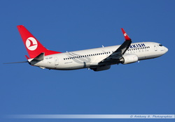 Boeing 737 Turkish Airlines - TC-JGY