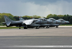 Harrier GR7 Royal Air Force - ZD403