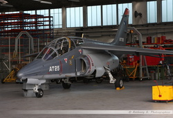 Alphajet Belgian Air Force - AT25
