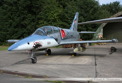 L-39 Hungarian Air Force - 119