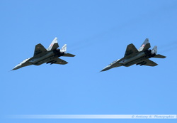 Mig-29 Polish Air Force - 89 & 40